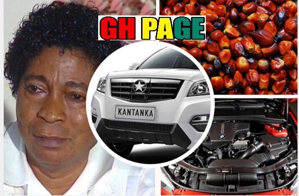 [Video] Apostle Kwadwo Safo Explains How He Uses Palm Nut To Make Car Engine