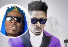 Shatta Wale new multicolored look
