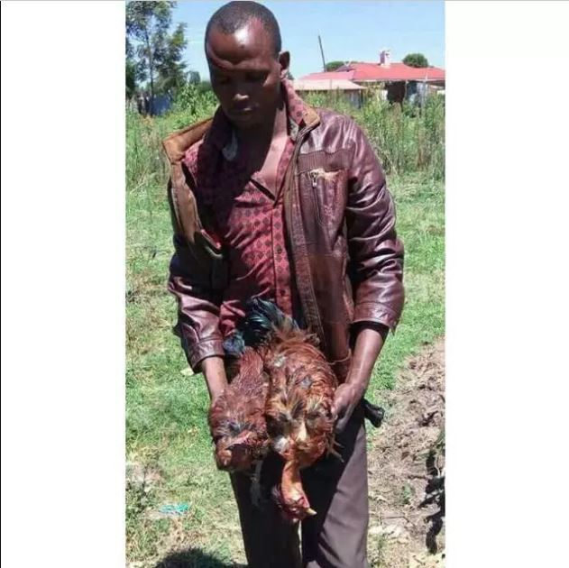 Man Rapes Two Of His Neighbor's Hens To Death