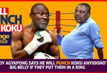 Video: Leave me in the ring with Koku Anyidoho and I will deflate his Potbelly - Ken Agyapong