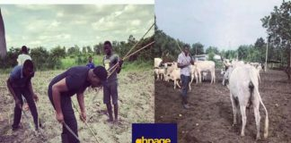 10 legal ways become rich Ghana