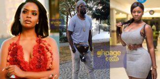 I still see Adebayor as single-Princess Shyngle tells Dillish Mathews