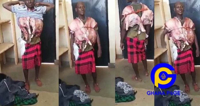 Video of a talented thief wearing a full goat he stole inside his suit to avoid being caught goes viral