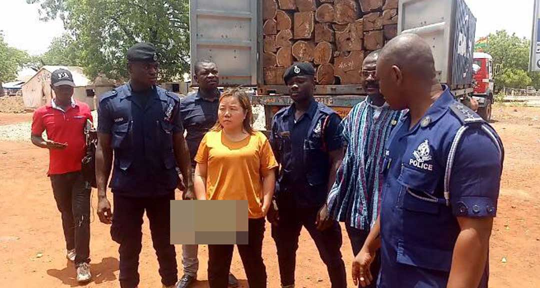 Chinese woman arrested with 4 trucks of rosewood in Tamale - GhPage