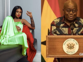 Becca accused of begging Akuffo Addo for money to campaign for NPP