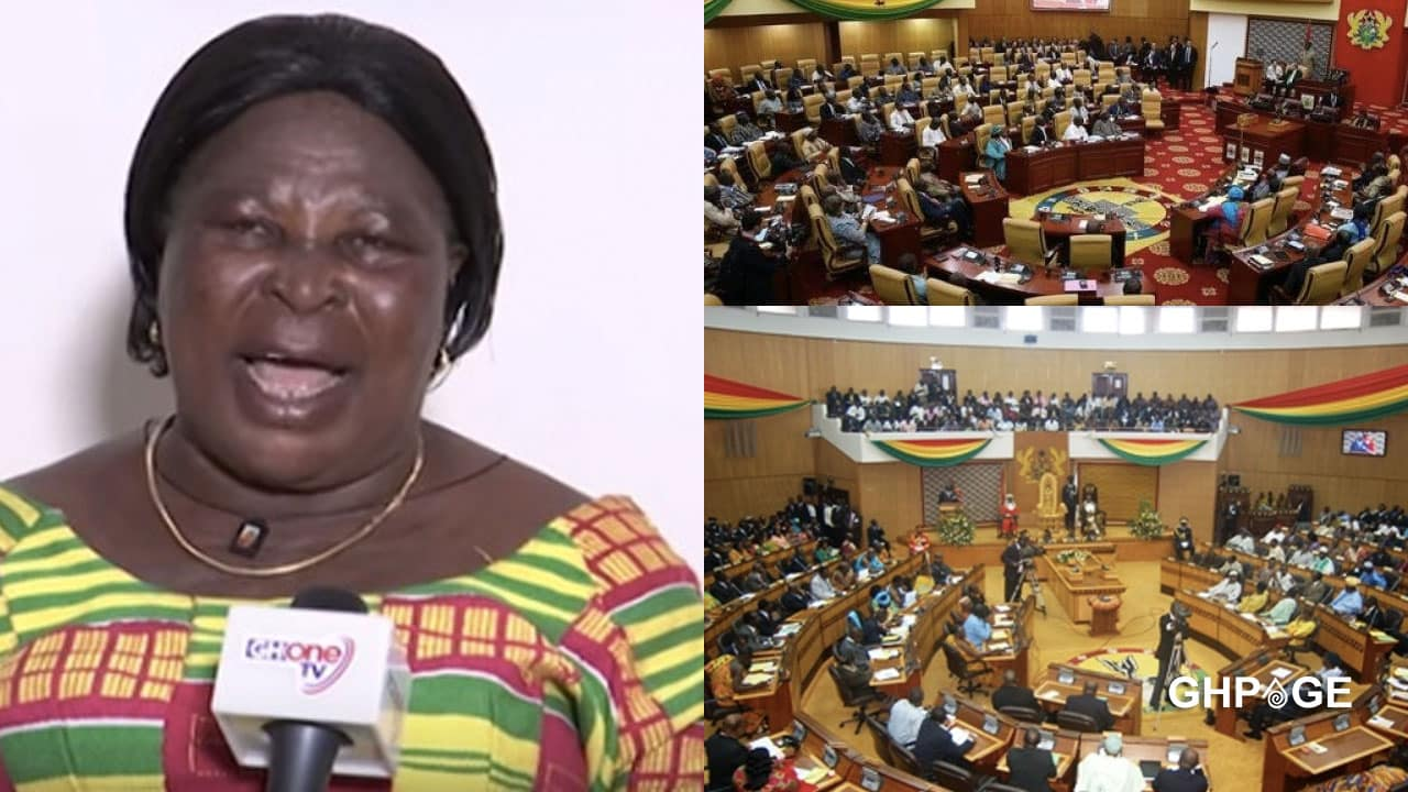 MP's would never pay their V8 car loans - Akua Donkor